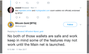 BitcoinGoldRecommends-mybtgwallet-scam-walletbtg2