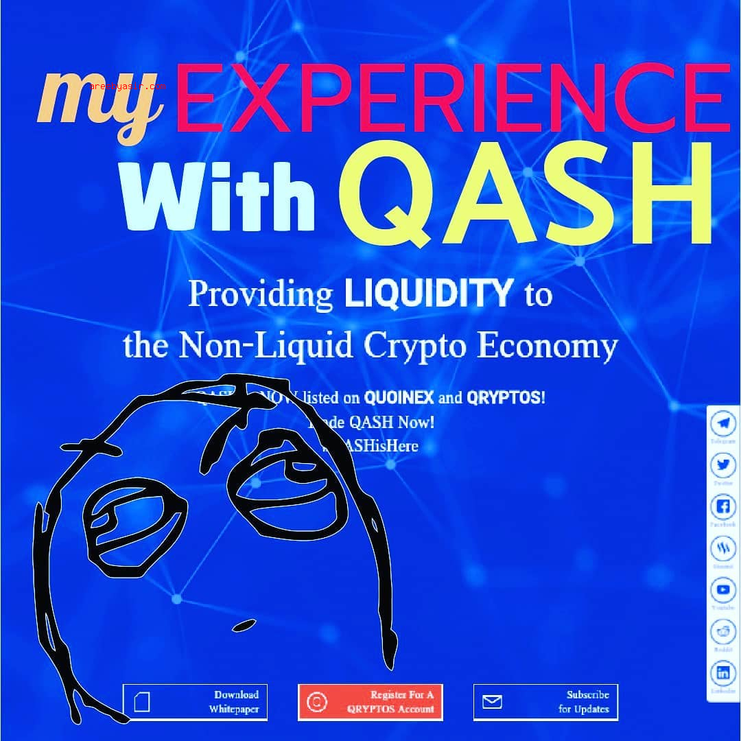 Why I Didn't Get In On QASH Coin from Quoine/Liquid ICO
