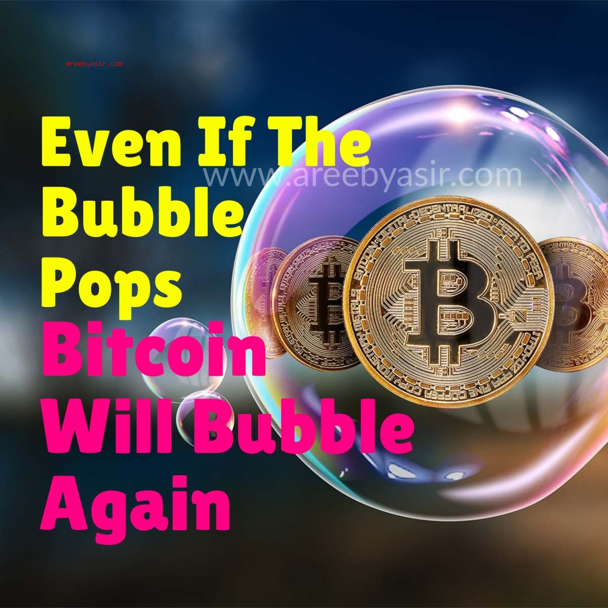 "The Bitcoin ""Bubble"" May Pop But Rise Again"