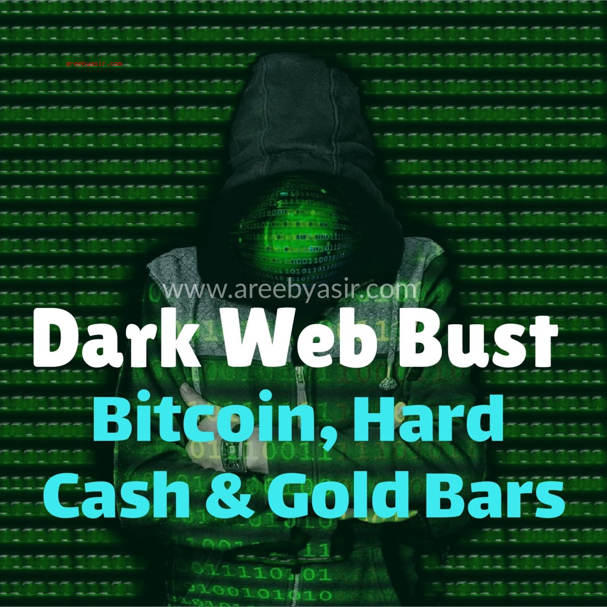 The Dark Web Bust