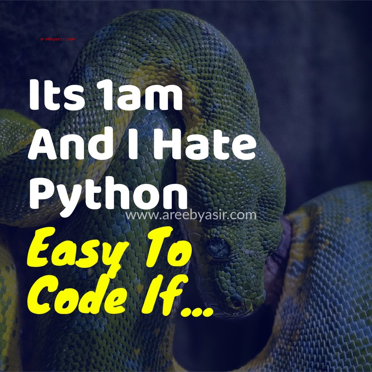 Python Easy To Code