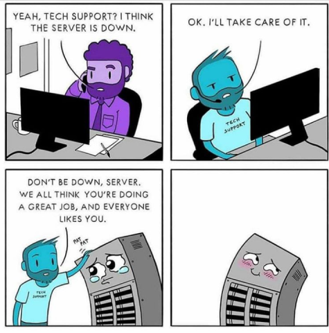 Tech Support is your friend, don't yell at the team and they won't yell at the server rack.