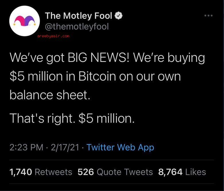 Motley Fool in support of Bitcoin at the high